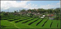 Bezienswaardigheden Bali