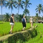 Wandelen Bali